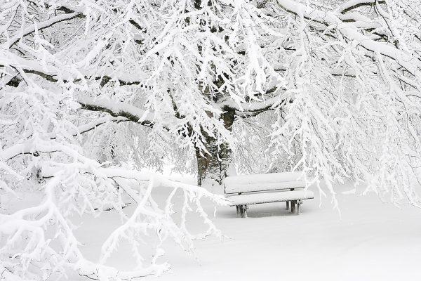 Sneeuwjacht